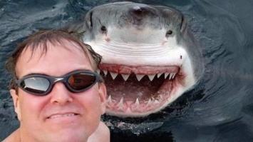 selfiee