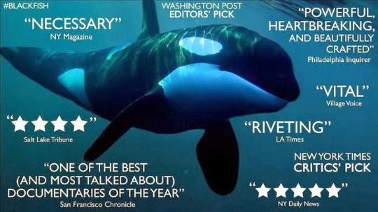 Blackfish Documentary (2013)